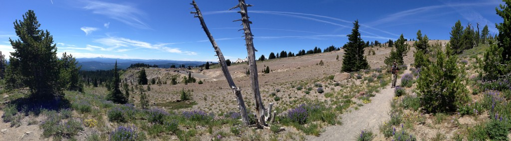 Pano looking southwest from Timberline