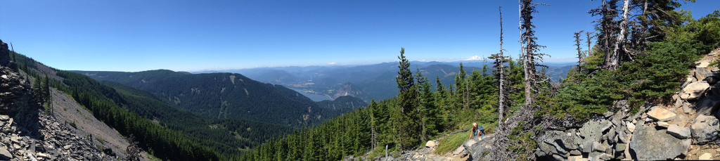 panoramic_view