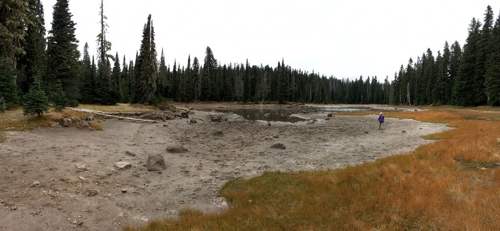 Sand lake surrounded by meadow.