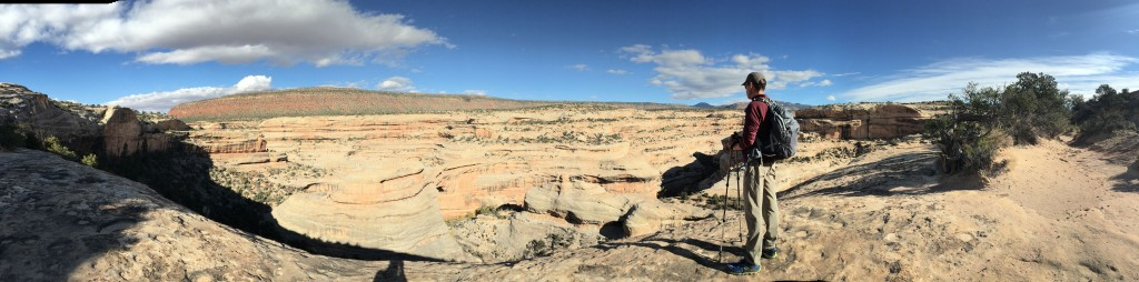 Natural Bridges panorama